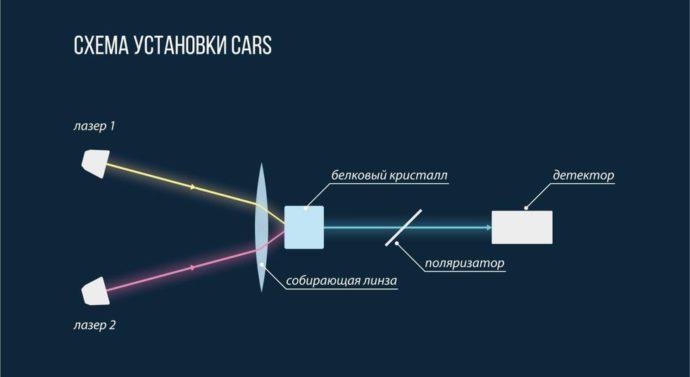 Скрещённые лазерные лучи помогли обнаружить «ценные» белковые кристаллы