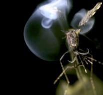 Лазер от комаров  + видео