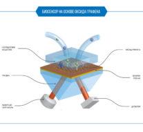 Учёные МФТИ с помощью лазера создали биосенсор на основе оксида графена, который ускорит поиски лекарств от ВИЧ и рака