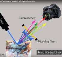Мощные лазеры помогли ученым восстановить внешний вид пернатого динозавра + видео