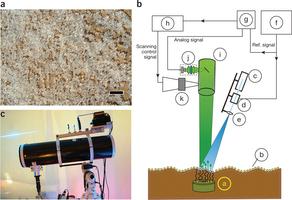 В Израиле учатся искать мины с помощью бактерий, лазеров и дронов