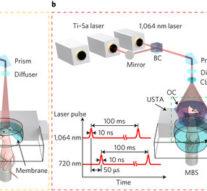 Звук и лазеры позволили рассмотреть работу органов в реальном времени