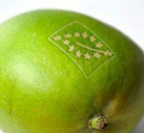 Лазерная маркировка овощей и фруктов