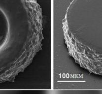 Российские учёные создали быстрый 3D-принтер с помощью наночастиц и лазер