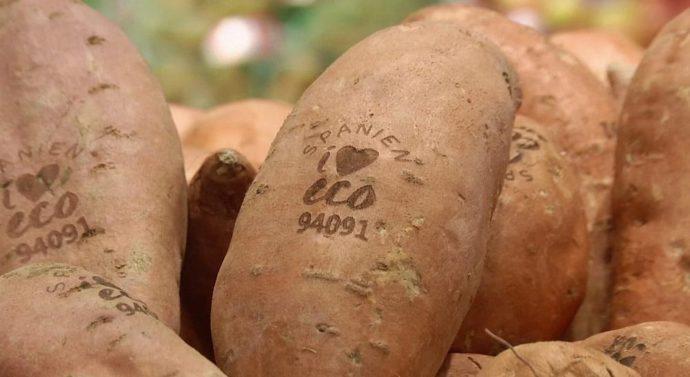 Лазерная «татуировка» для овощей и фруктов +видео