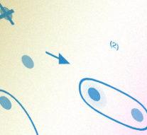 Измерения запутанных фотонов доказали существование небинарных корреляций