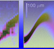 Физики впервые увидели осцилляции Блоха по смещению атомов в оптической решетке