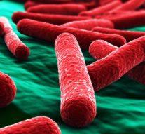 «Бактериальный сканер» быстро диагностирует инфекцию крови