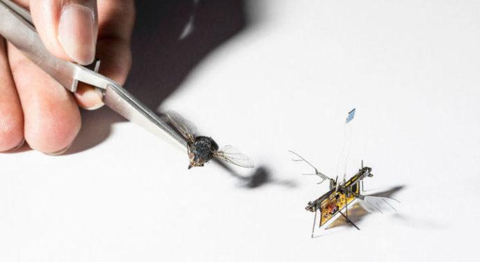 Инженеры создали первого робота-муху с питанием от лазерного луча + видео