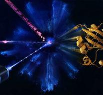 Ученые на XFEL впервые наблюдали за жизнью белков в реальном времени