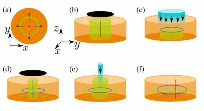 В топологически нетривиальной автокаталитической реакции получили смайлик