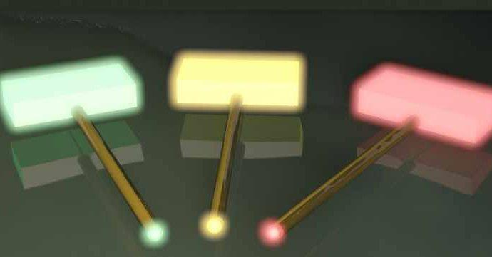Ученые показали, как можно вырастить оптические чипы в обычной чашке Петри