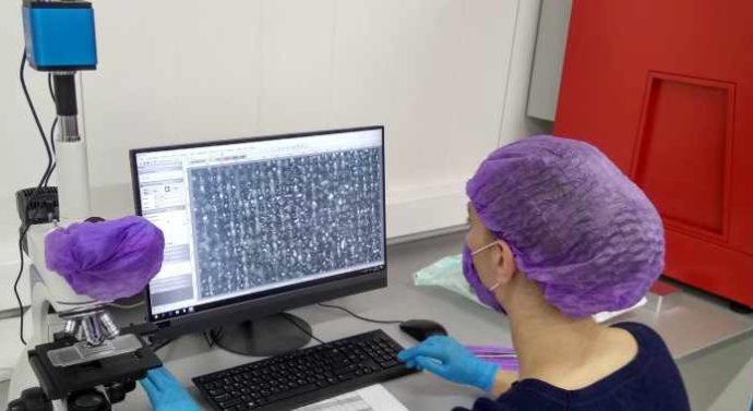 Лазеры для медицины: как ученые ИТМО с партнерами работают над решением проблемы медицинских титановых сплавов