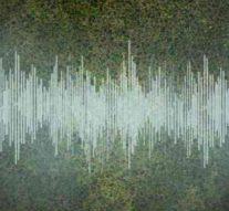 С помощью лазеров физики впервые записали звук «идеальной» жидкости