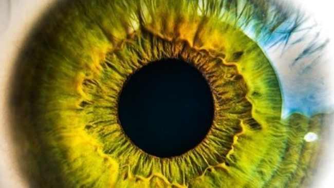 Японцы создали лазерный проектор, проецирующий HD-видео прямо на сетчатку глаза человека