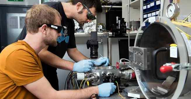 Австрийские физики с помощью лазера измерили гравитационное притяжение божьей коровки
