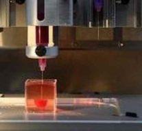 В НИЯУ МИФИ приступили к созданию искусственных хрящей методом трехмерного биопринтинга